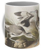 Semipalmated Snipe Or Willet Coffee Mug