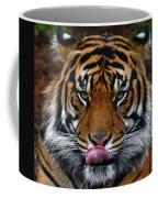 Send More Tourists Coffee Mug