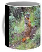 Sentry Coffee Mug