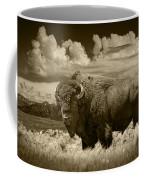 Sepia Toned Photograph Of An American Buffalo Coffee Mug