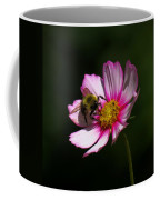 September Bee On Cosmos Coffee Mug