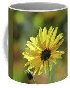 September Sunny Daisy Coffee Mug