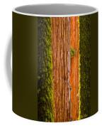 Sequoia Abstract Coffee Mug
