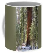 Sequoia General Sherman Coffee Mug