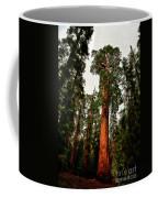 Sequoia In Kings Canyon Coffee Mug