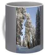 Sequoia National Park 4 Coffee Mug