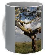 Serengeti Dreams Coffee Mug