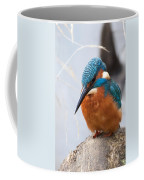 Serious Kingfisher Coffee Mug