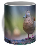 Seriously Cute Coffee Mug by Cindy Lark Hartman