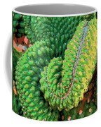 Serpentine Coffee Mug