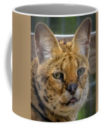 Serval Cat Coffee Mug