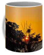 Setting Mangrove Sun Coffee Mug