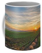 Setting Sun Of Pine Island Coffee Mug