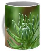 Setum With Crystal Ball Coffee Mug