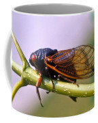 Seventeen Year Cicada Coffee Mug