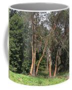 Seward Park Trees Coffee Mug