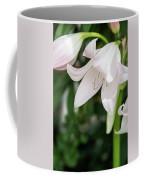 Sexual Flower Coffee Mug