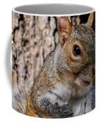 Sexy Squirrel Coffee Mug