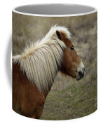 Shackleford Banks Coffee Mug