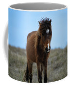 Shackleford Banks Pony Coffee Mug