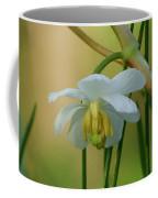 Shaded Mayapple Coffee Mug