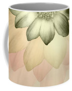 Shades Of A Daisy Coffee Mug
