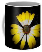 Shadow Around Crown Coffee Mug