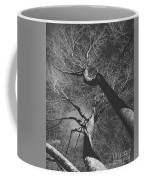 Shadow Of The Day Coffee Mug