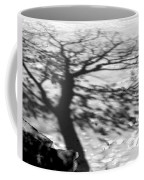 Shadow Tree  Herrick Lake  Naperville Illinois Coffee Mug