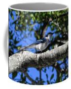 Shadowy Blue Jay Coffee Mug