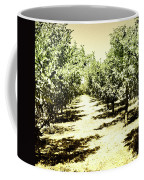 Shady Grove Palm Springs Coffee Mug