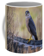 Shakerag Coopers Hawk Coffee Mug