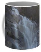 Shannon Falls_mg_-tif- Coffee Mug