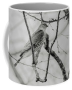 Sharp-shinned Hawk Black And White Coffee Mug