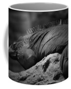 Shedd Aquarium Iguana Coffee Mug