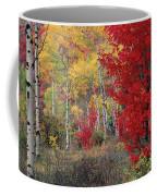 Sheep Canyon In Autumn Coffee Mug