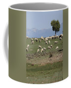 Sheep Country Coffee Mug