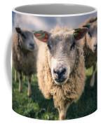 Sheep Coffee Mug