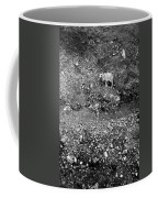 Sheep In Bw Coffee Mug