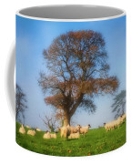 Sheep In Somerset - Impressions Coffee Mug