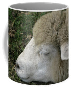 Sheep Sleep Coffee Mug