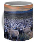 Sheepherder Life Coffee Mug