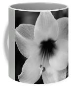 Sheer Amaryllis Coffee Mug