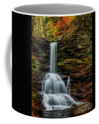 Sheldon Reynolds Falls Coffee Mug
