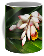 Shell Ginger Flowers Coffee Mug