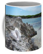 Shell On Dominican Shore Coffee Mug