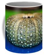 Shell With Pimples Coffee Mug