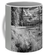 Shepard Lake Coffee Mug