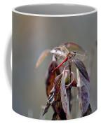 Shimmering Wings- Dragonfly Coffee Mug
