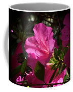 Shining Azalea Coffee Mug